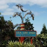 Sea Life Park – A Popular Hawaii Toruist Attraction