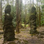 Lava Tree State Park – One of Hawaii's most unusual attraction