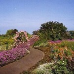 Enchanting Floral Gardens of Kula in Maui, Hawaii
