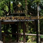 Hawaii Tropical Botanical Garden