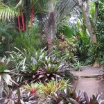 World Botanical Gardens – 275 acres of natural Hawaiian beauty