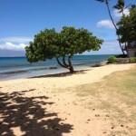Honokowai Beach – A beach and a park rolled into one