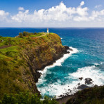 Discover Hawaii's wildlife at Kilauea Point National Wildlife Refuge
