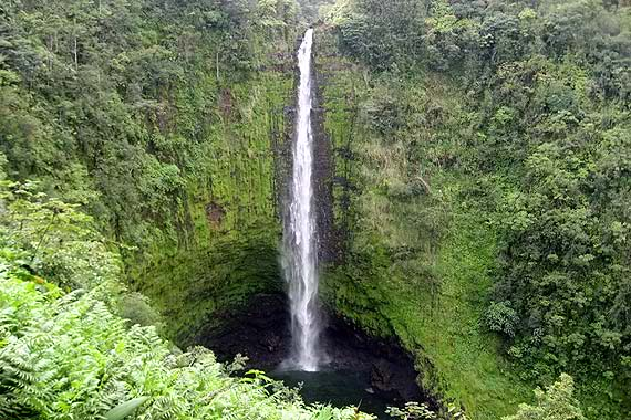Waterfalls of Hawaii - Akaka Falls