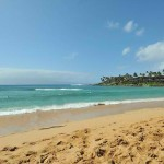 Napili Bay Beach – A Popular Beach for Swimming and Surfing in Maui, Hawaii