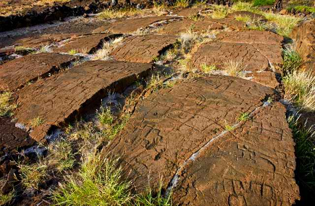 Puako Petroglyphs - Big Island, Hawaii