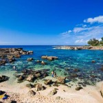 Shark's Cove – A Spectacular Dive Spot in Oahu, Hawaii