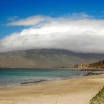 Sugar Beach – A Long Stretch of Sand in Maui's South Shore